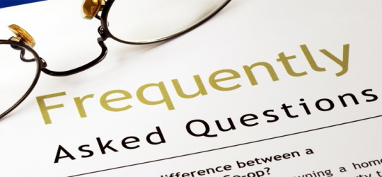 WHAT ARE THE KEY QUERIES TO ANSWER ON GUARANTEED LOANS?